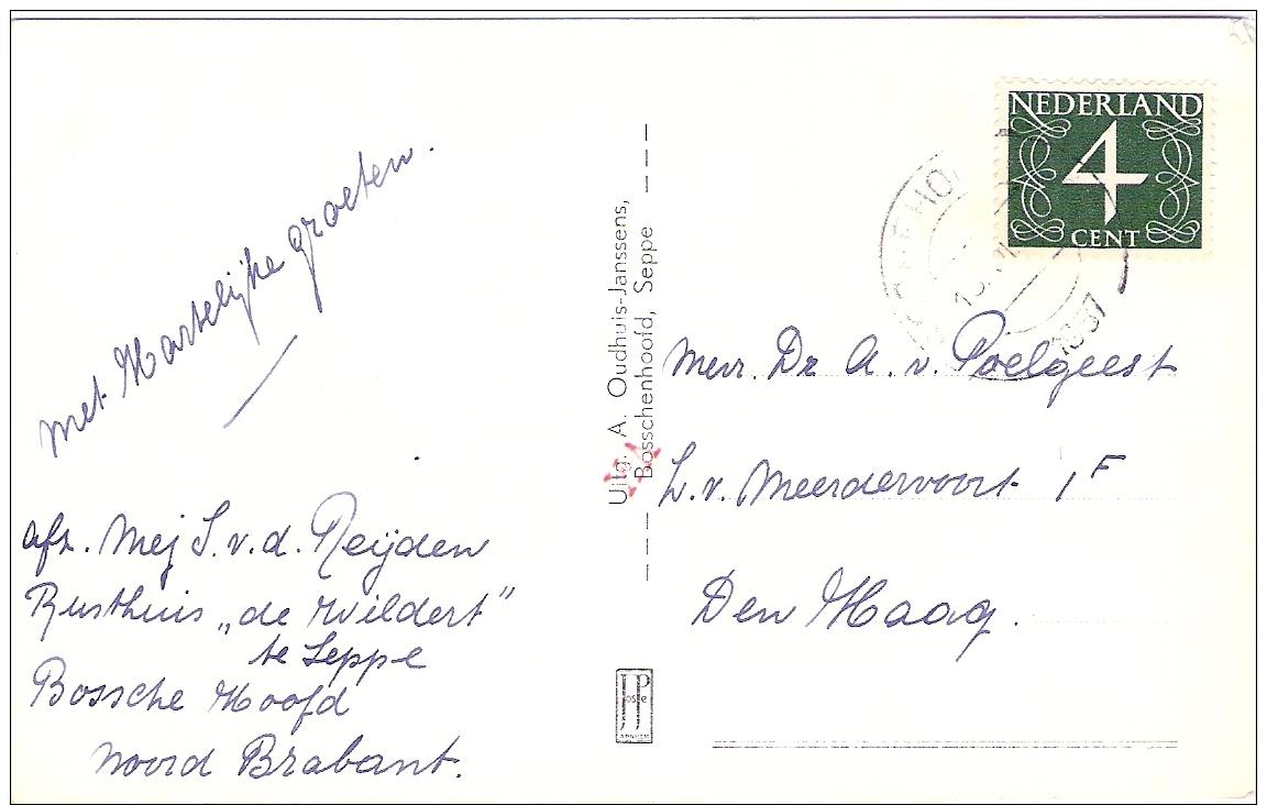 Seppe  Rusthuis De Wildert  Echte Fotokaart 1957 - Nederland