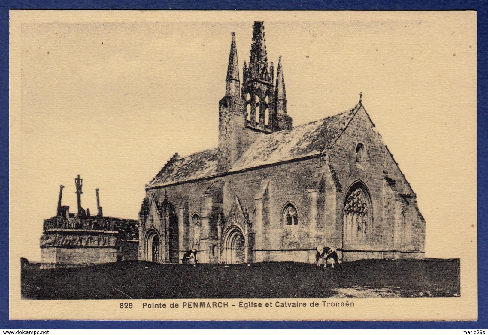 29 SAINT-JEAN-TROLIMON Eglise Et Calvaire De Tronoën ; Vache - Saint-Jean-Trolimon