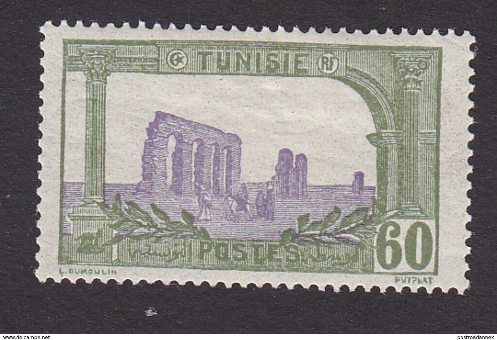 Tunisia, Scott #48, Mint Hinged, Ruins Of Hadrian's Aqueduct, Issued 1906 - Tunisia (1888-1955)