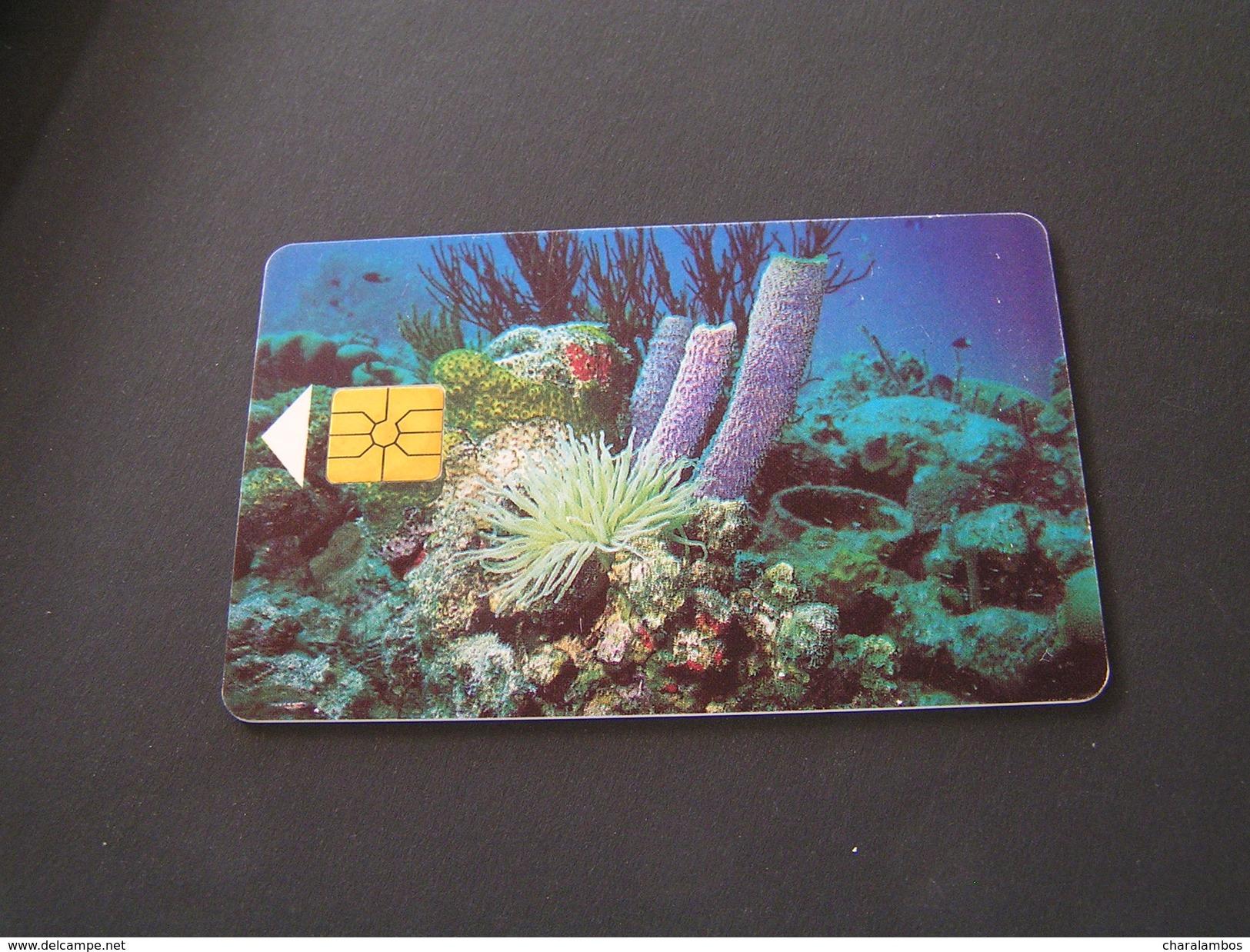 Antilles [Netherlands] Phonecards. - Antilles (Netherlands)