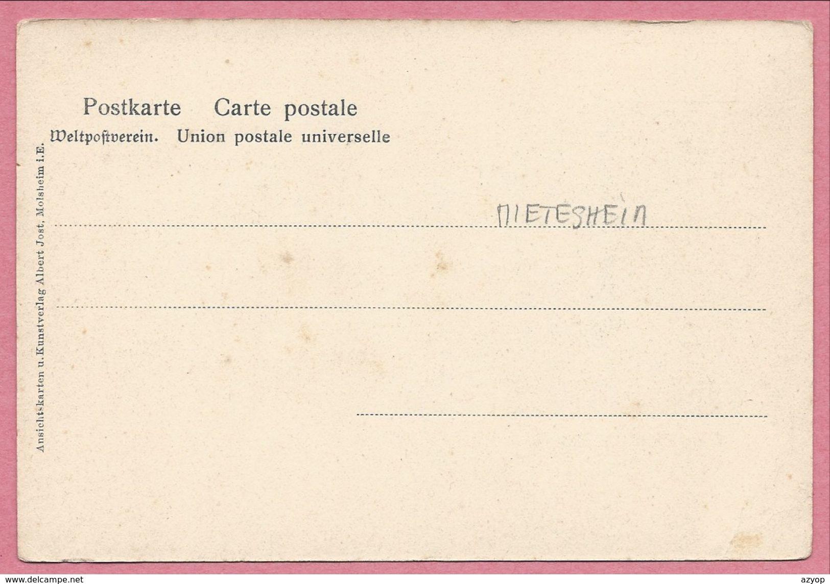 67 - MIETESHEIM - METSEM - S' Hopfezopfe - Récolte Du Houblon - Houblonnière - Non Classificati