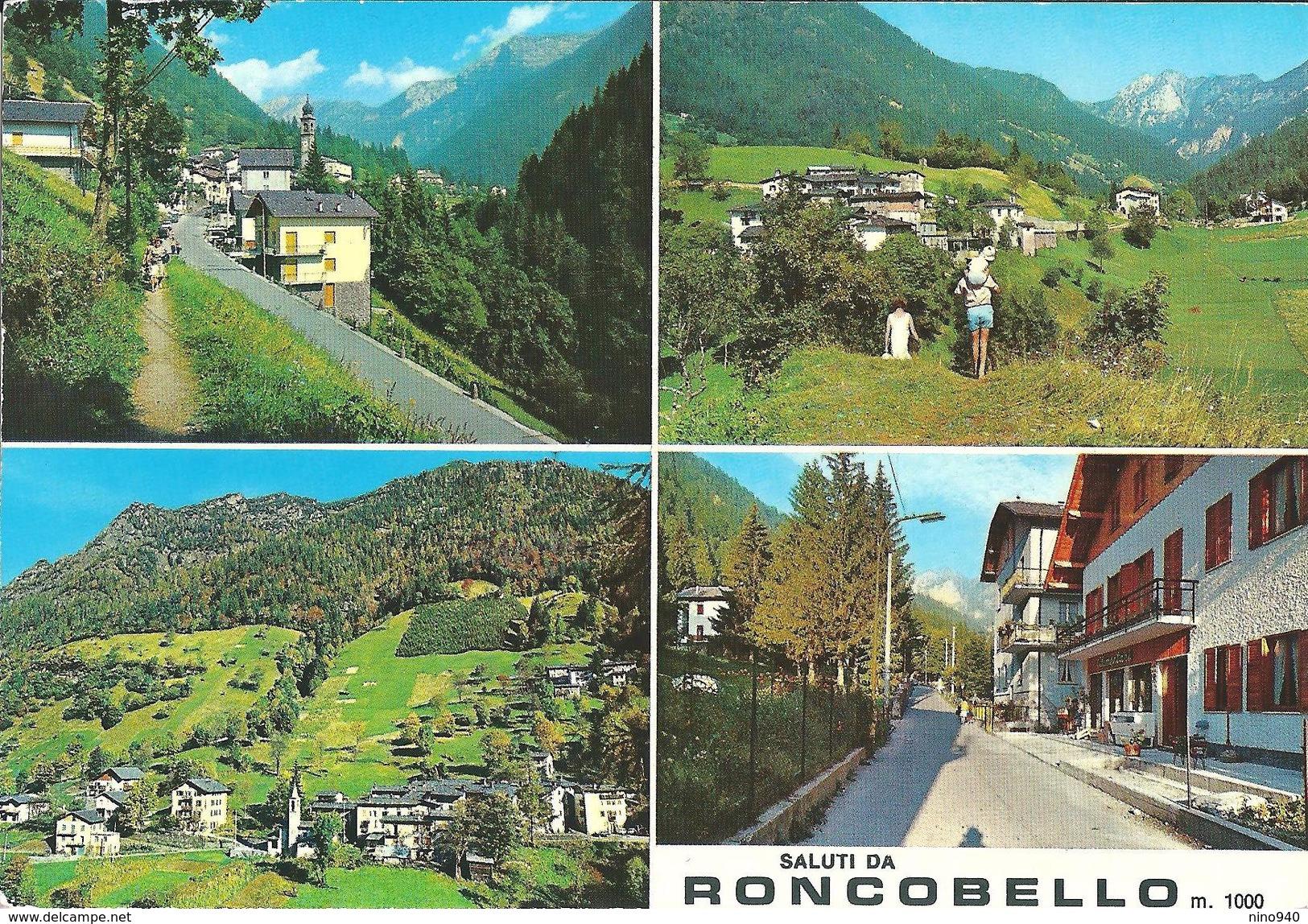 SALUTI DA RONCOBELLO (BG) - VEDUTINE  - F/G - N/V - Italia