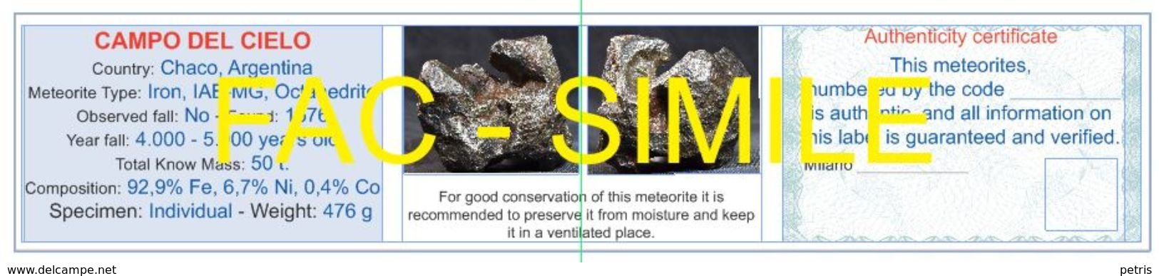 Meteorite Campo Del Cielo, Argentina 427 G. With Authenticity Certificate - Lot. M019 - Meteorites