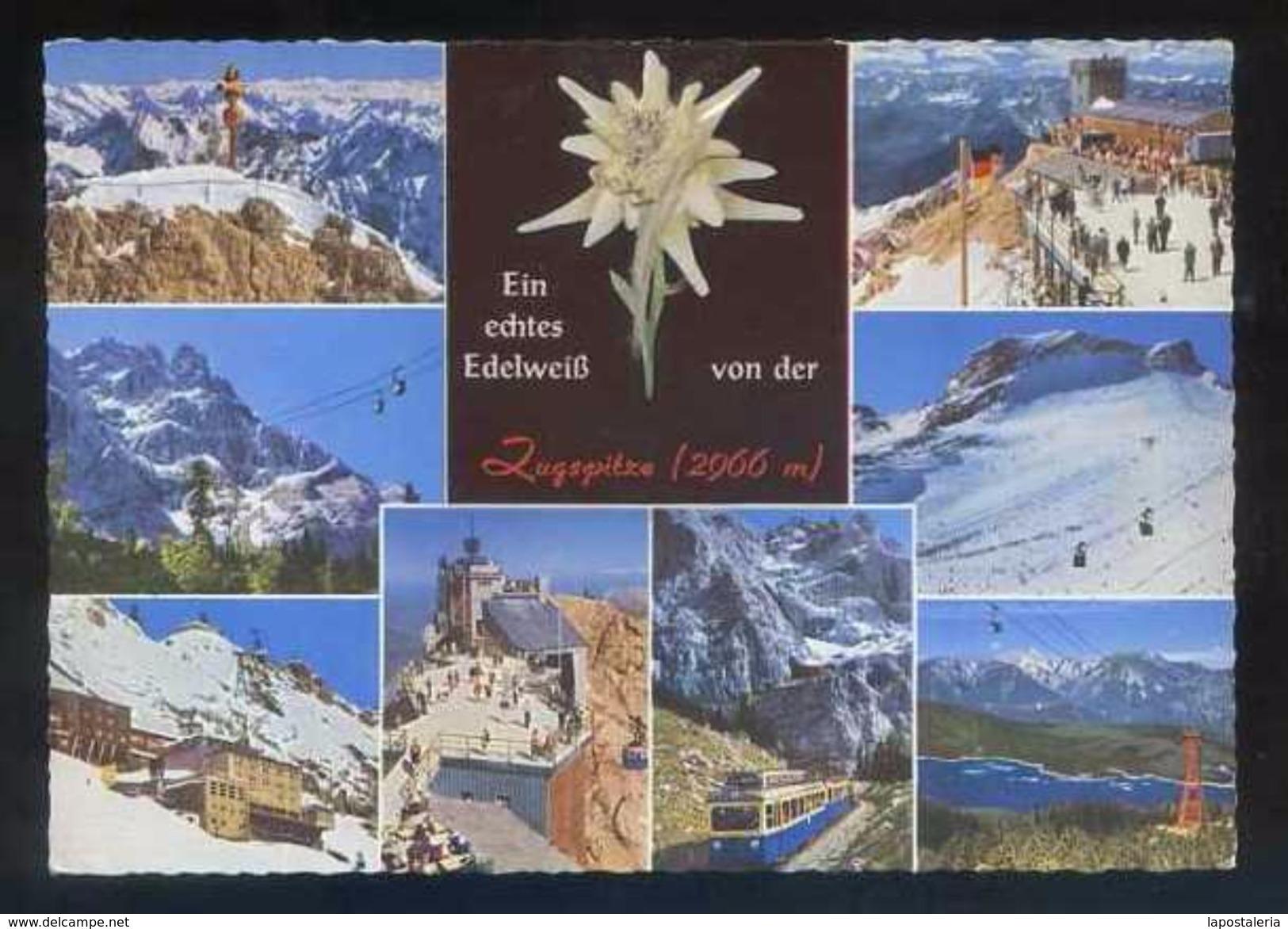 Postal Con Flor Edelweiss. *Zugspitze 2966 M.* Ed. Huber-Postkarte Nº 8503. Nueva. - Sin Clasificación