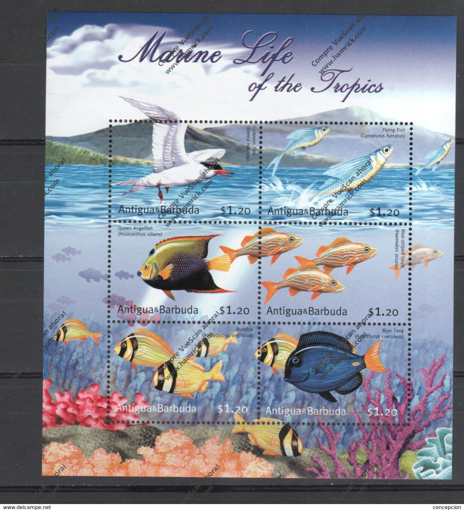 ANTIGUA BABUDA Nº 3087 AL 3092 - Fische