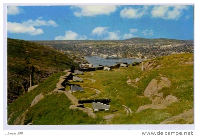 NEWFOUNDLANDER  St John's View From Signal Hill: Queen's Battery In Foreground - St. John's