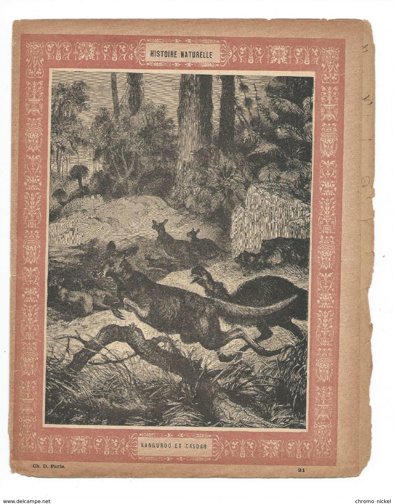 Kangourou Casoar Protège-cahier Couverture De Cahier Corbeil Crété Fin XIX  Didactique Au Dos. Etat Moyen Mais RR. - Animaux