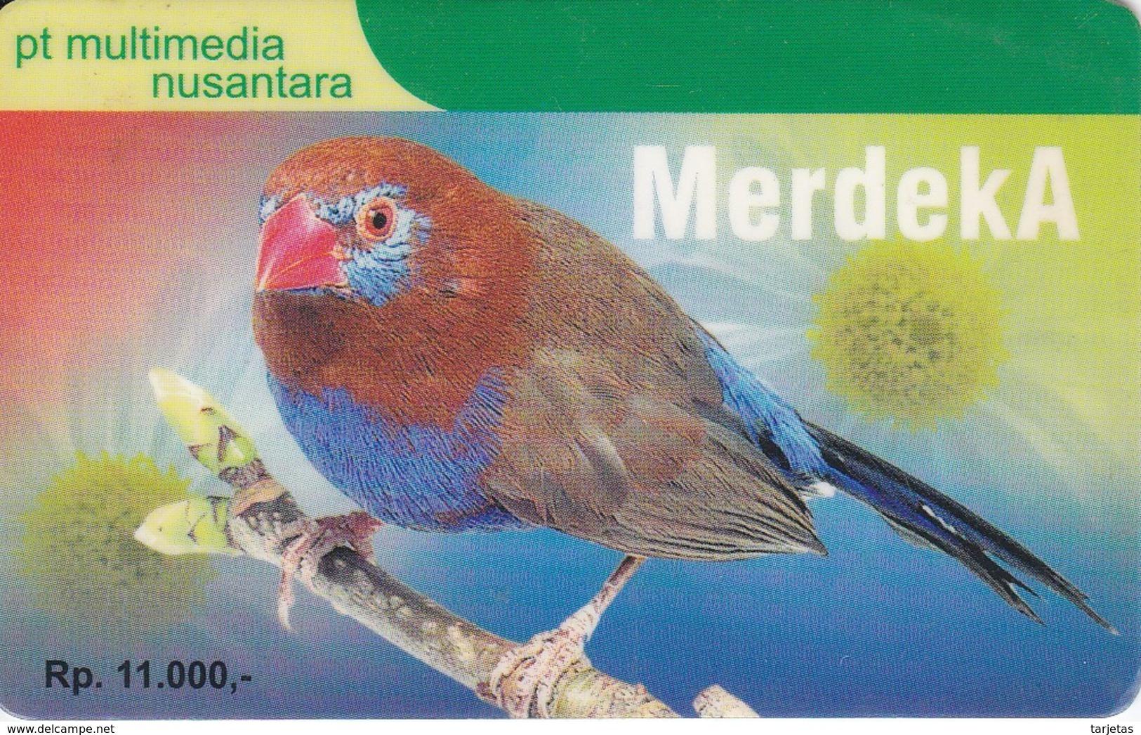 TARJETA DE INDONESIA DE UN PAJARO DE COLORES (BIRD-PAJARO) - Pájaros