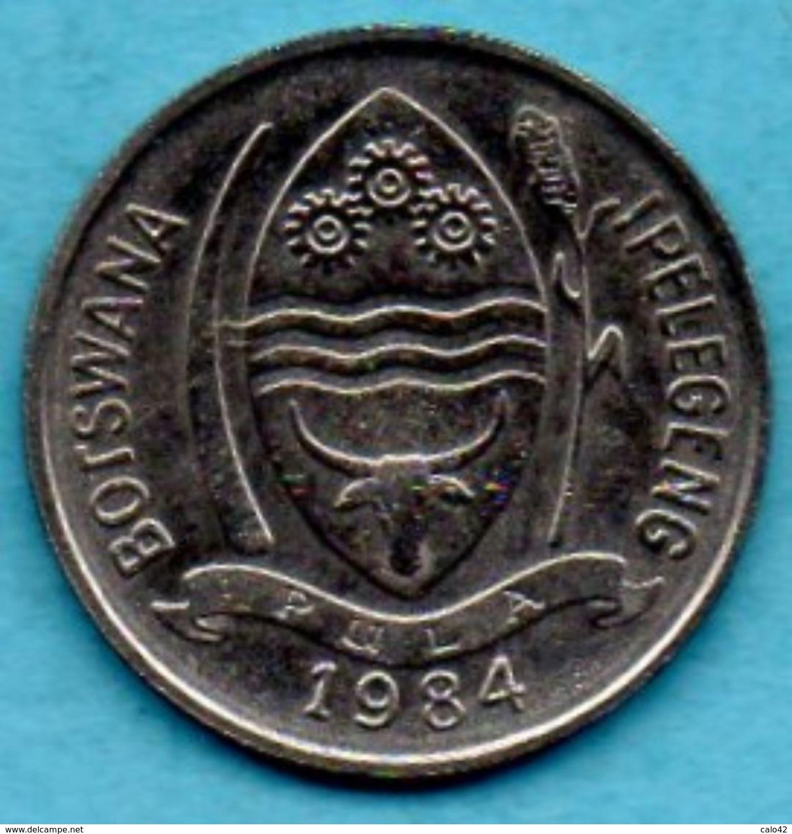 C5/ BOTSWANA 10 THEBE 1984 - Botswana