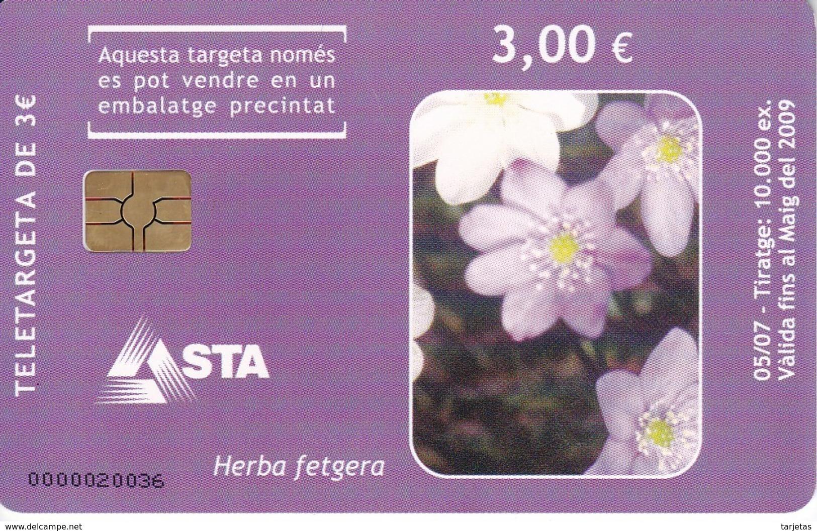 AND-156 TARJETA DE ANDORRA DE LA HERBE FETGERA (FLOR-FLOWER) - Andorra