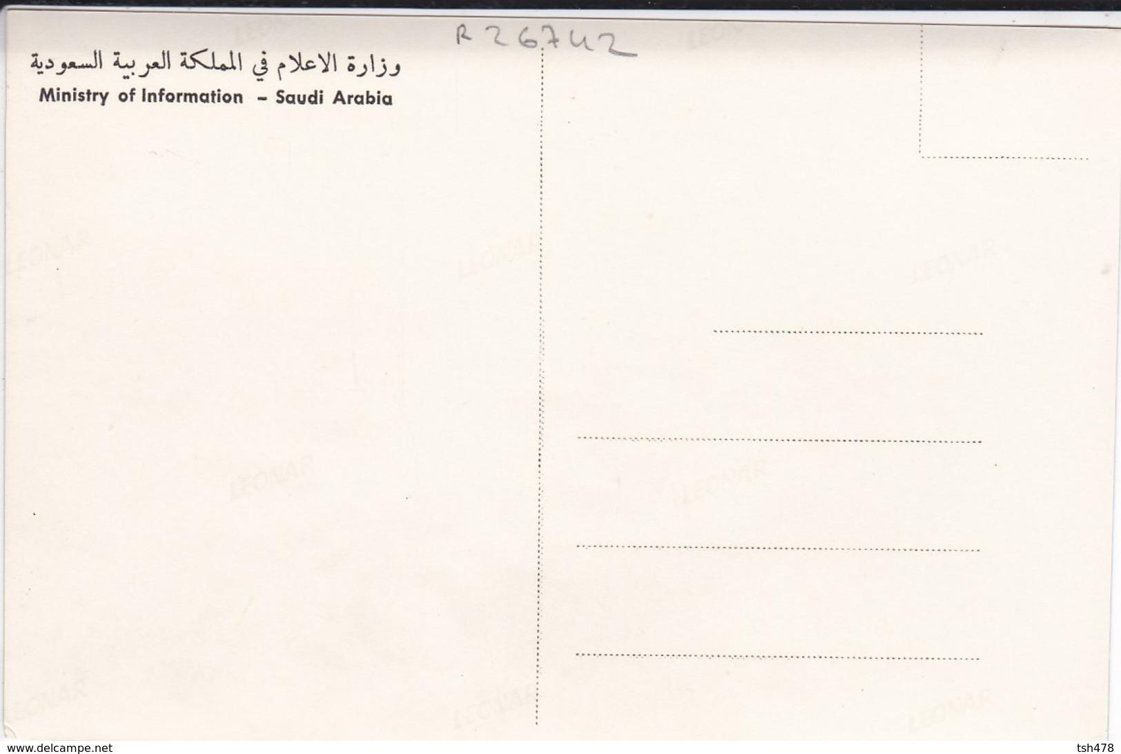 SAUDI ARABIA--RARE--farming In Abha--munistry Of Information--carte Photo--voir 2 Scans - Arabie Saoudite