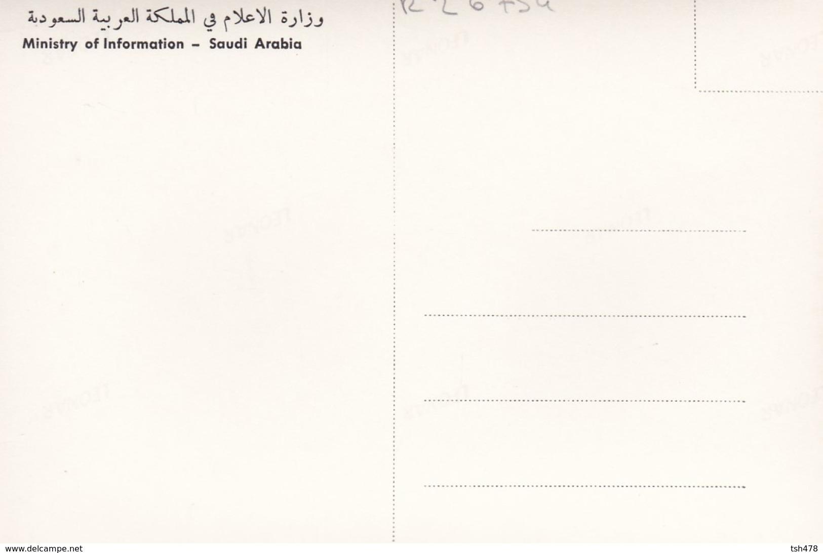 SAUDI ARABIA--RARE--public Parks In Riyadh--munistry Of Information--carte Photo--voir 2 Scans - Arabie Saoudite