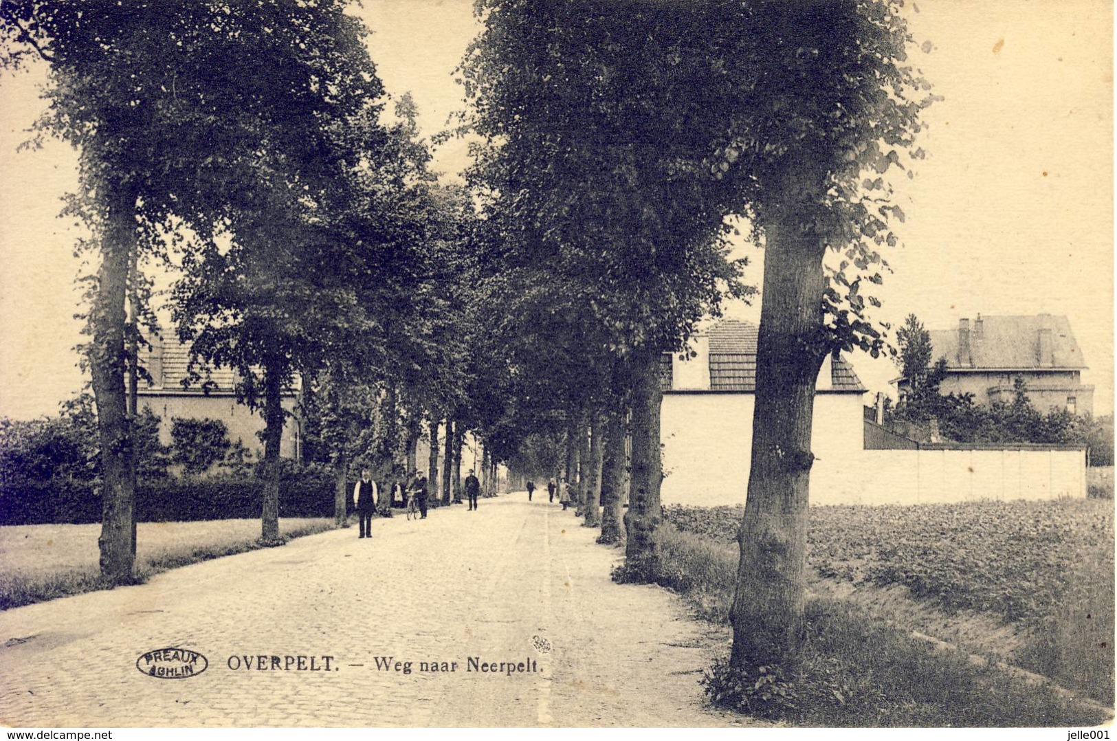Overpelt Weg Naar Neerpelt 1925 - Overpelt