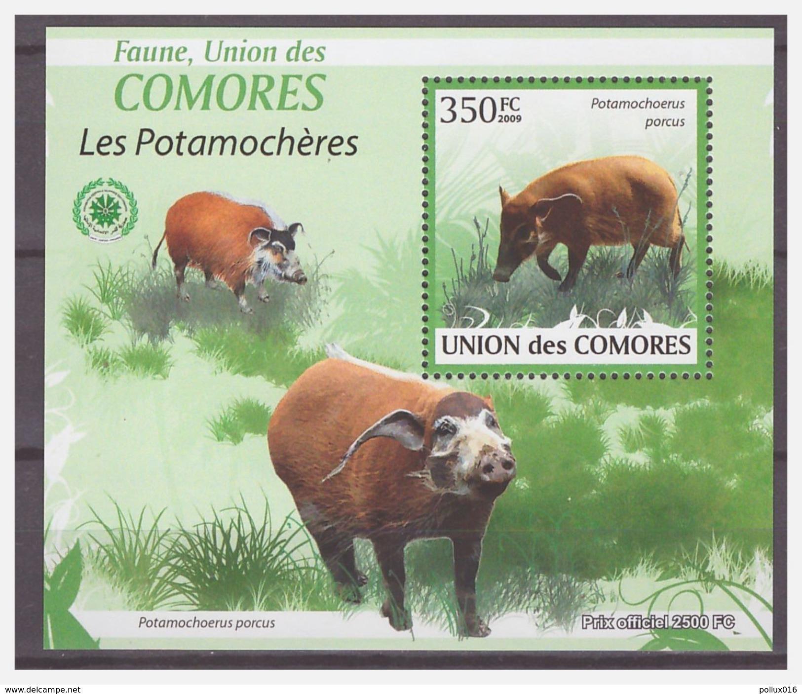 0308 Comores 2009 Varken Zwijn Pig Boar S/S MNH - Timbres