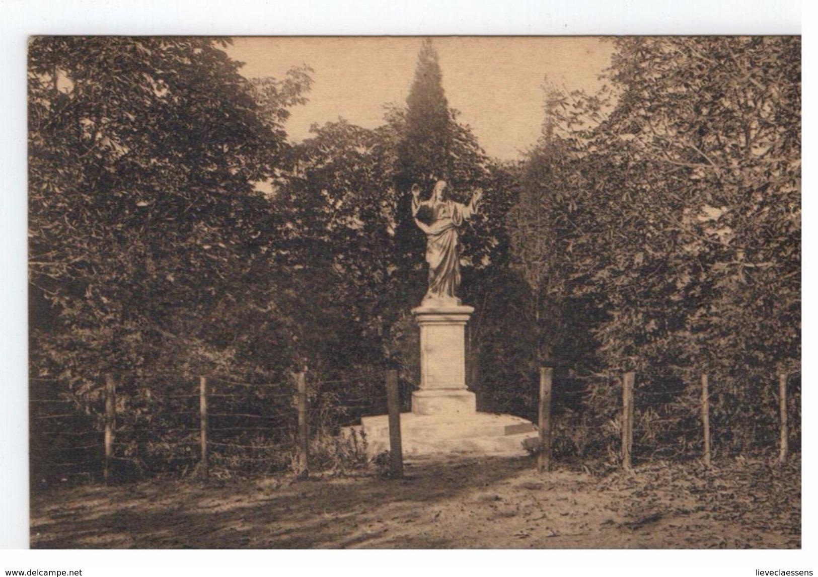 Aarschot - Damiaangesticht Speelplaats Standbeeld H.Hart - Aarschot