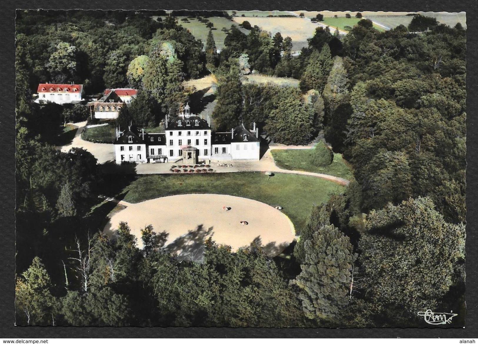 DORDIVES Vue Aérienne Du Château De Turelle (Combier) Loiret (45) - Dordives