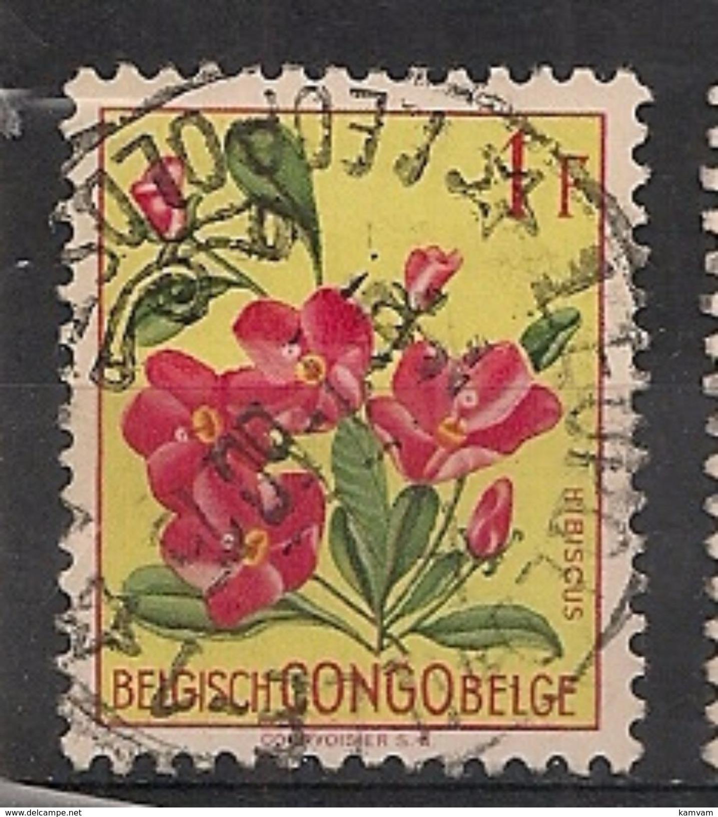 CONGO BELGE 310 LEOPOLDVILLE LEOPOLDSTAD - Congo Belge