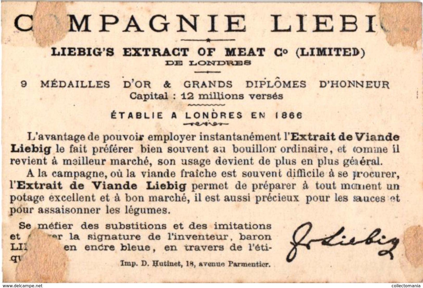6 Cards Complete Set Number 102 Compagnie Liebig Circa1876 Litho Hutinet RARE Oiseaux - Liebig