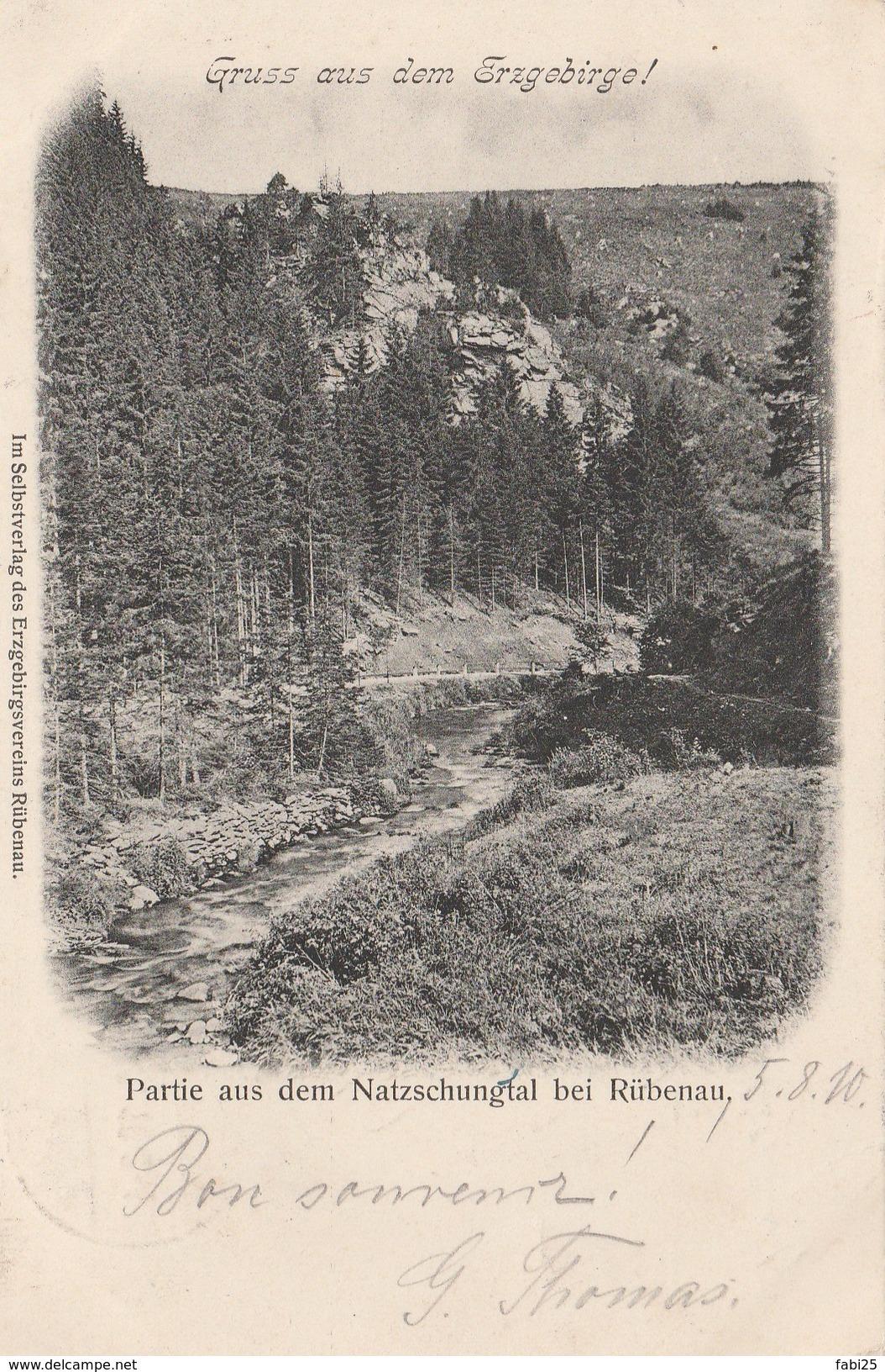 GRUSS AUS DEM ERZGEBIRGE PARTIE AUSDEM NATZSCHUNGTAL BEI RUBENAU - Frauenstein (Erzgeb.)