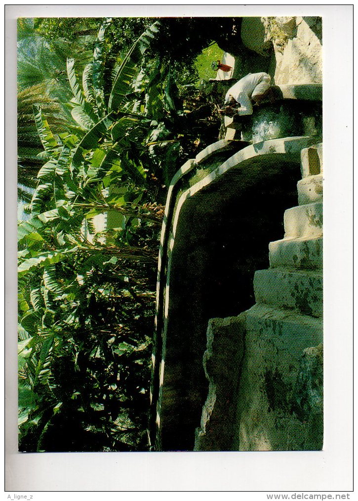 REF 290  : CPSM Sultanate Of Oman Falaj In Palm Garden - Oman