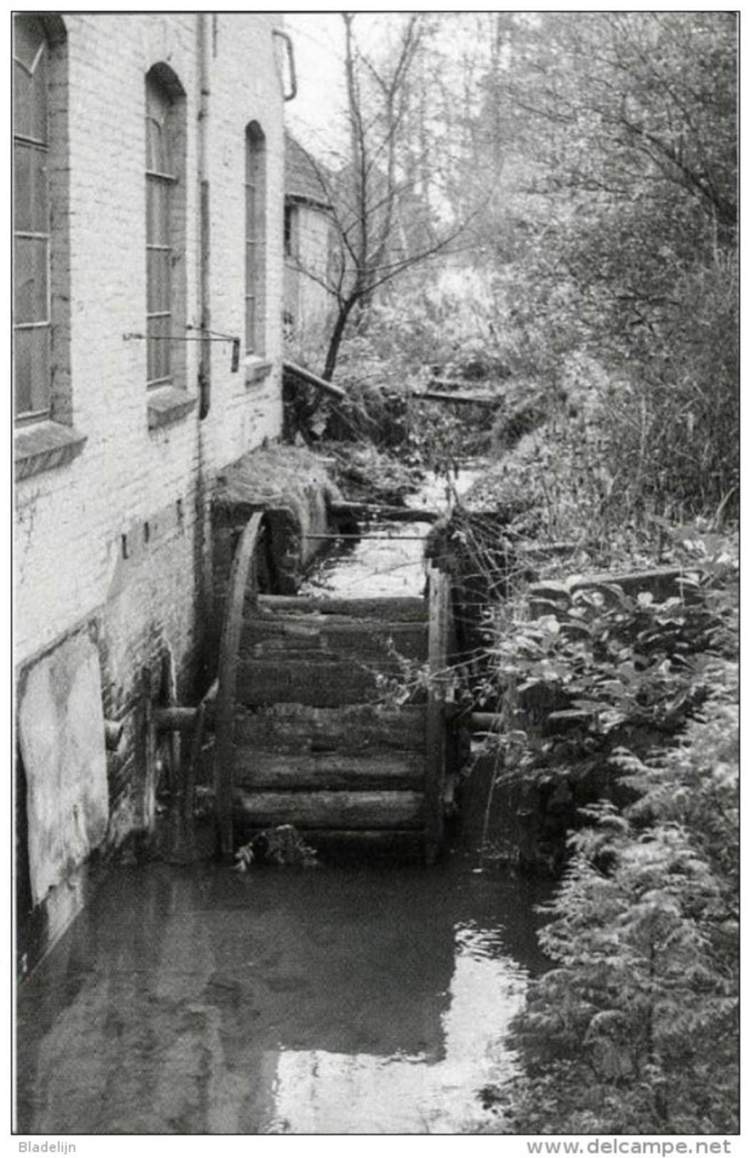 VAASSEN Bij Epe (Gelderland) - Molen/moulin - Verdwenen Watermolen ´Het Kraaiennest´. Historische Opname Uit 1969. - Epe