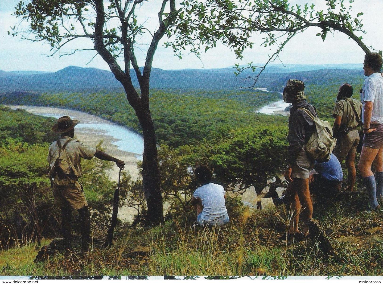 Wilderness Trail - Zululand - Natal - - Afrique Du Sud