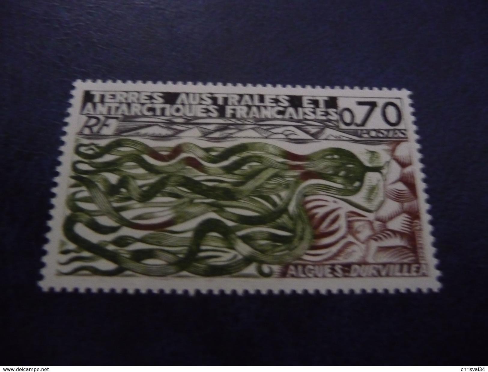 TIMBRE    TAAF     N  69       COTE  2,40  EUROS     1977    NEUF  LUXE** - Ongebruikt