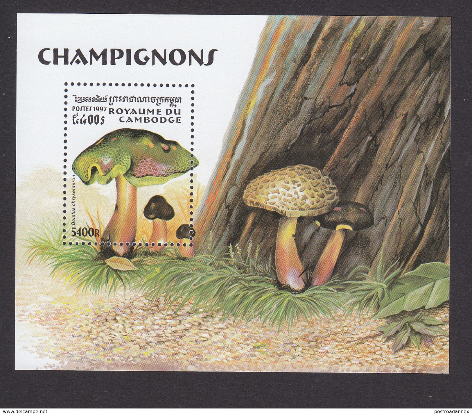 Cambodia, Scott #1668, Mint Hinged, Mushrooms, Issued 1997 - Cambodge