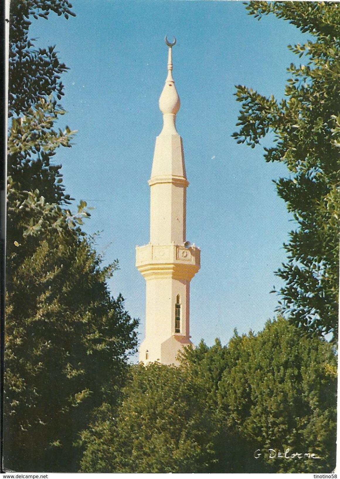 RIYADH  MOSQUES  MINARET  1983  VIAGGIATA - Arabia Saudita