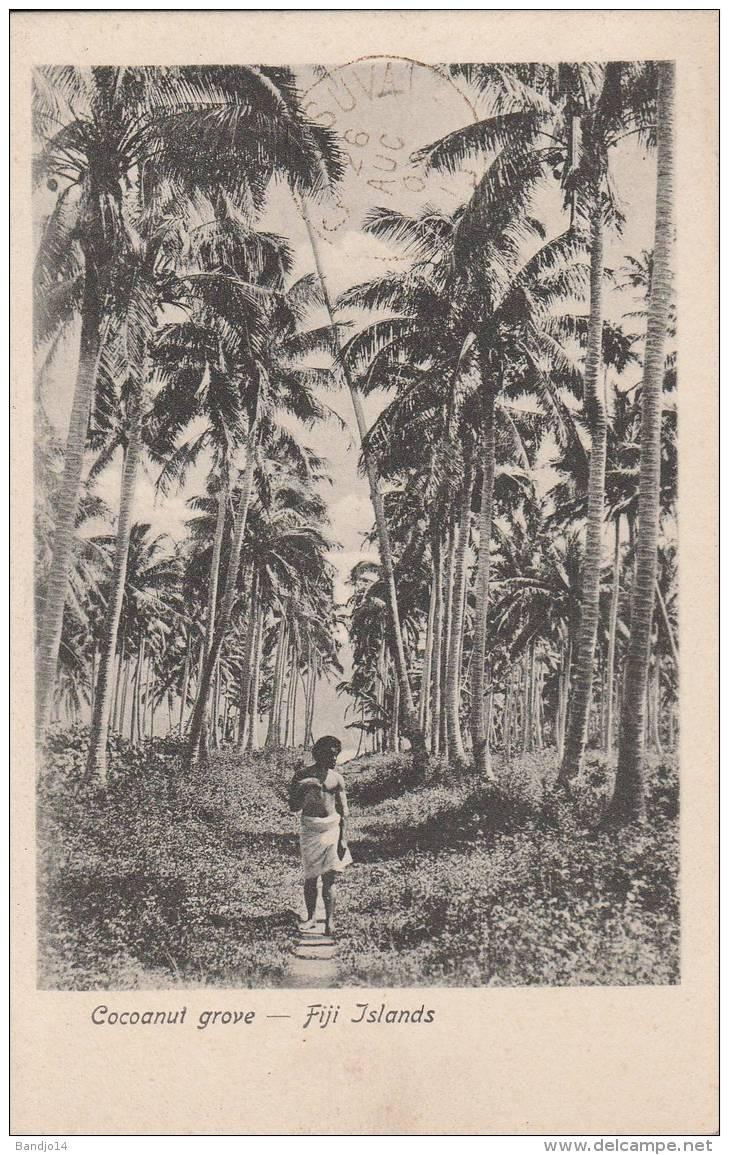 Fidji - Fiji  -  Cocoanut Grove   - 2 Scan - Fidji