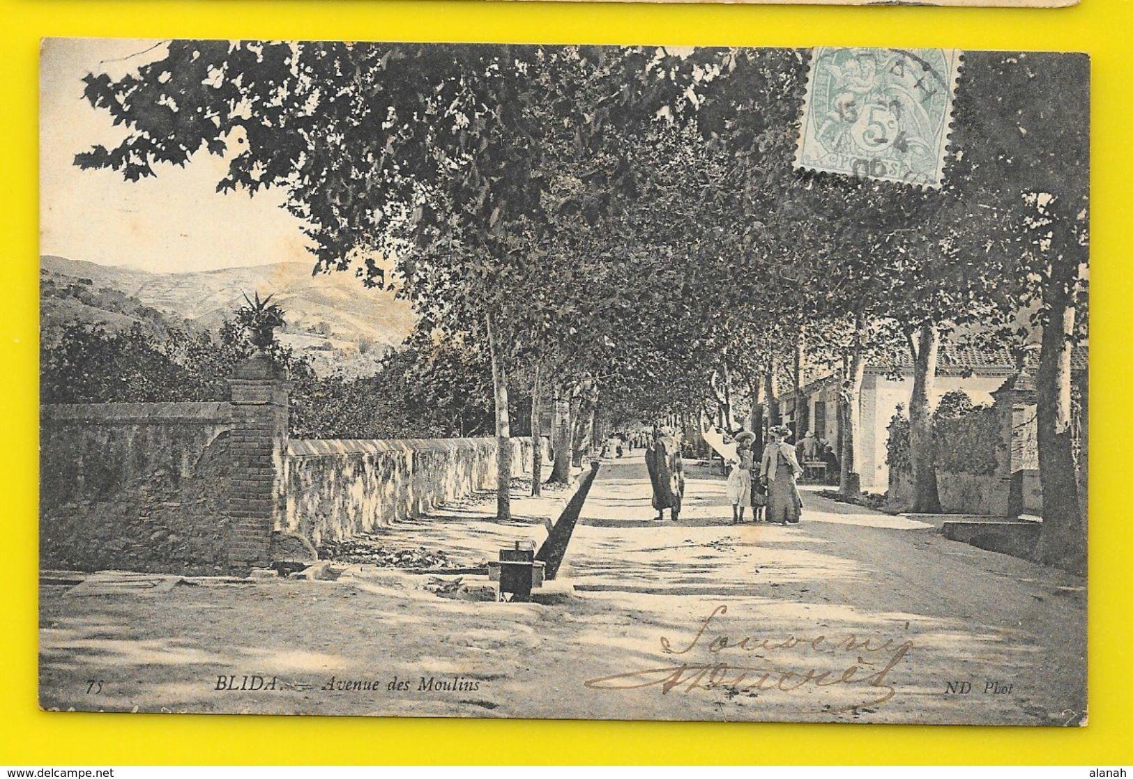 BLIDA Rare Avenue Des Moulins (ND Phot) Algérie - Blida