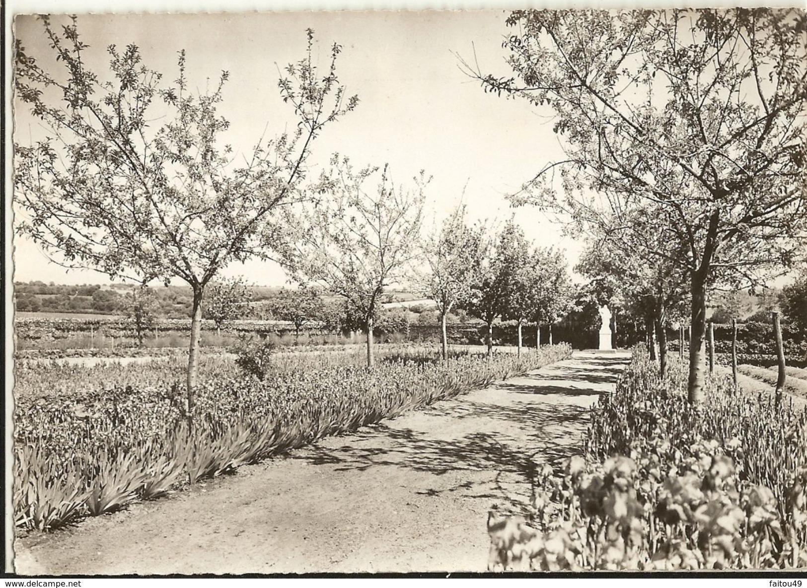 49 -  CHAUDRON EN MAUGES  - Jardin Du Couvent  ( Cpsm Gf) 265 - Other Municipalities