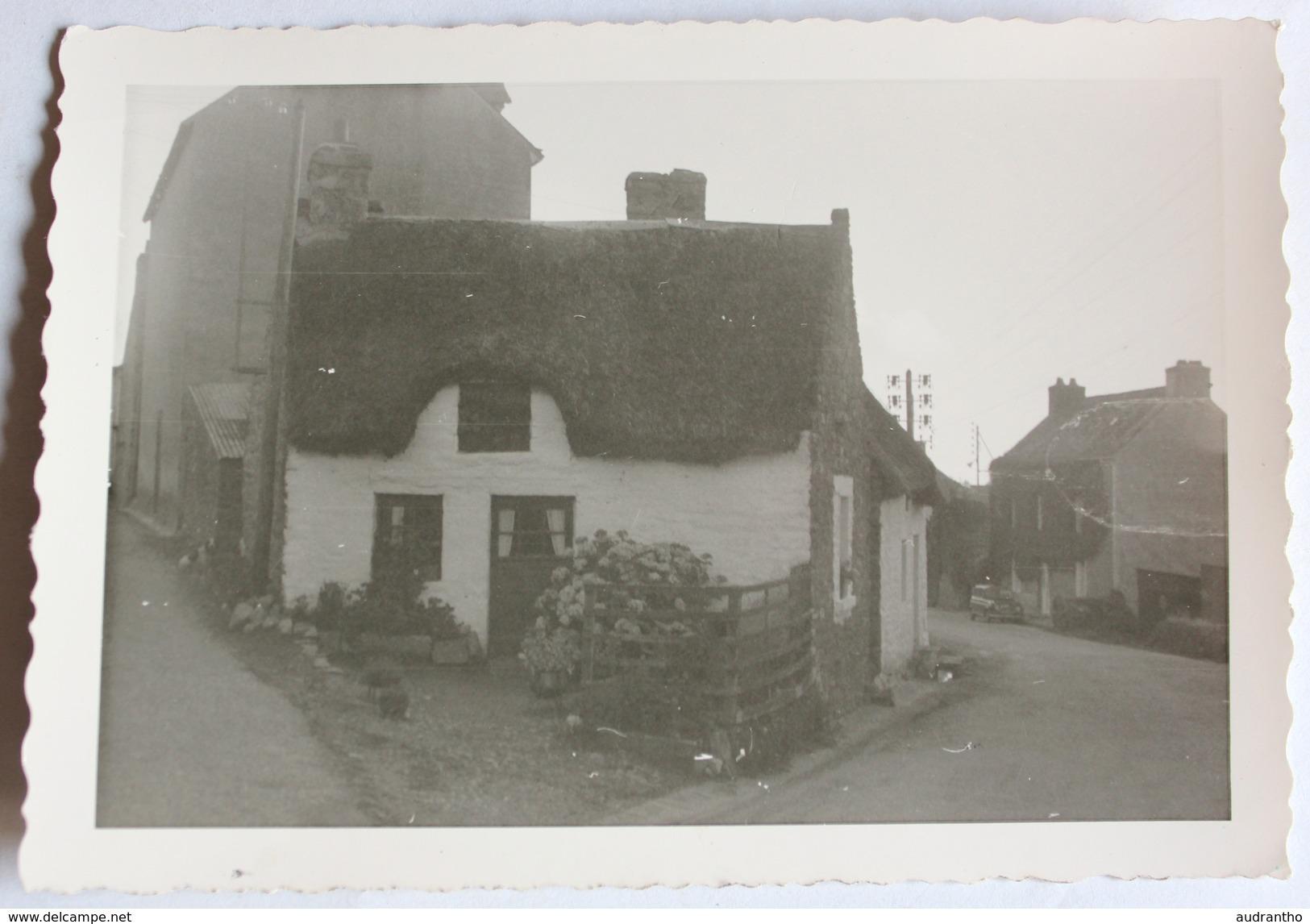 Photo Originale 29 Riec Sur Belon Petite Chaumière - France