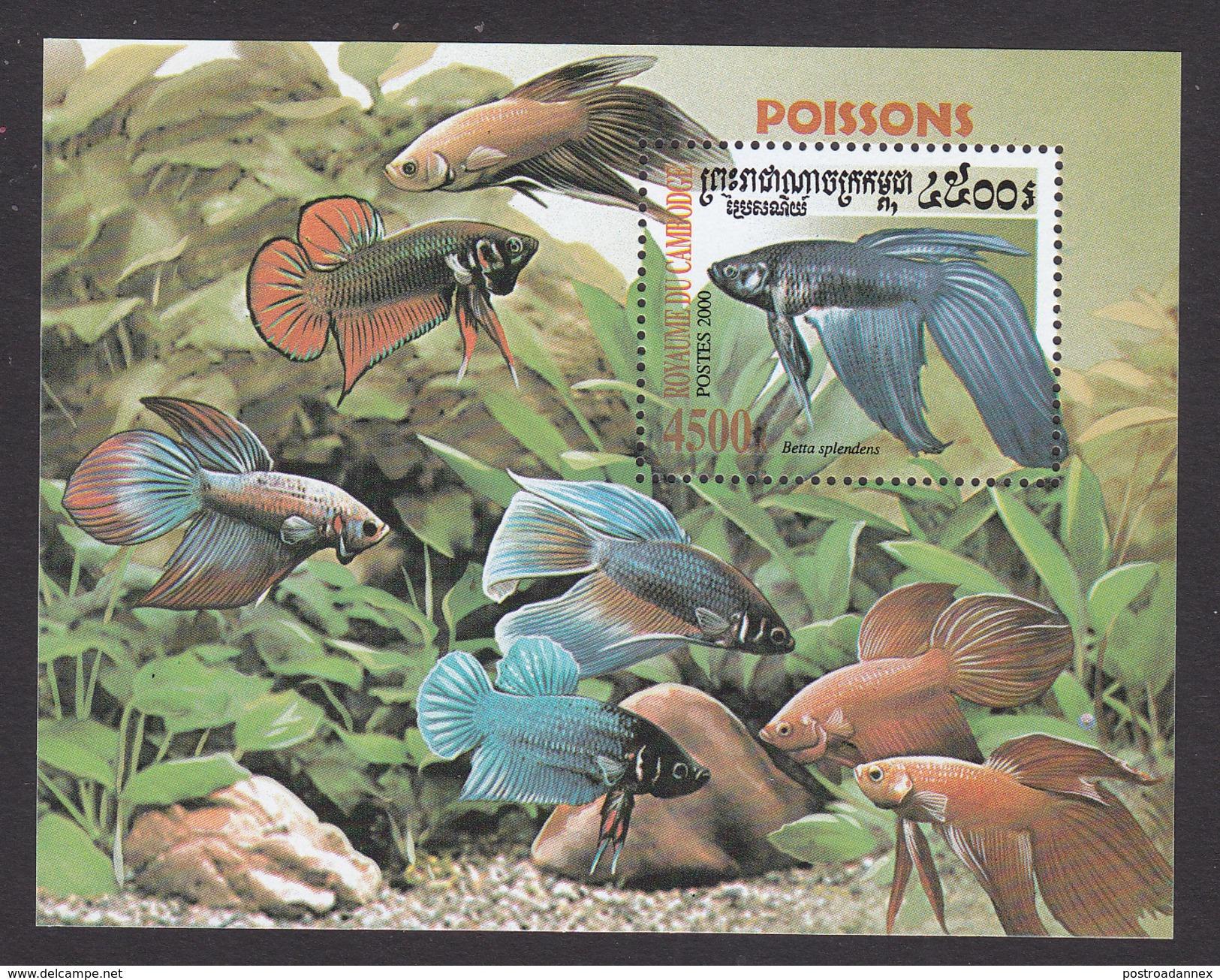 Cambodia, Scott #1951, Mint Hinged, Fish, Issued 2000 - Cambodia