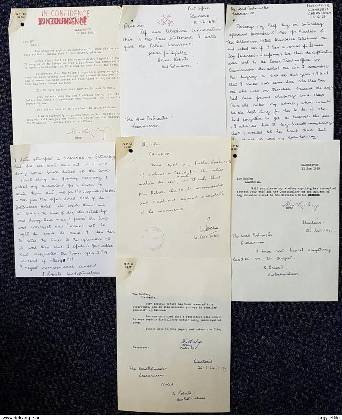 WALES CAERNAVON DOG LICENSE 1964 DOLBADARN HOTEL POLICE - Old Paper