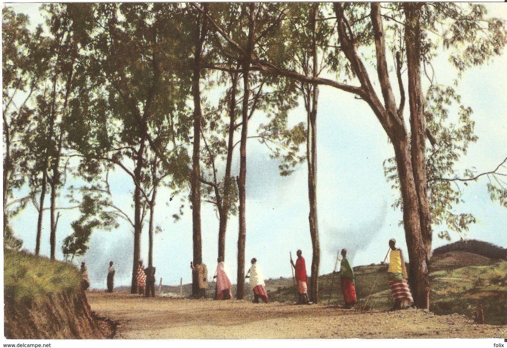 Usumbura / Bujumbura - Muramvya - Voyage Du Roi Au Congo été 1955 - Burundi