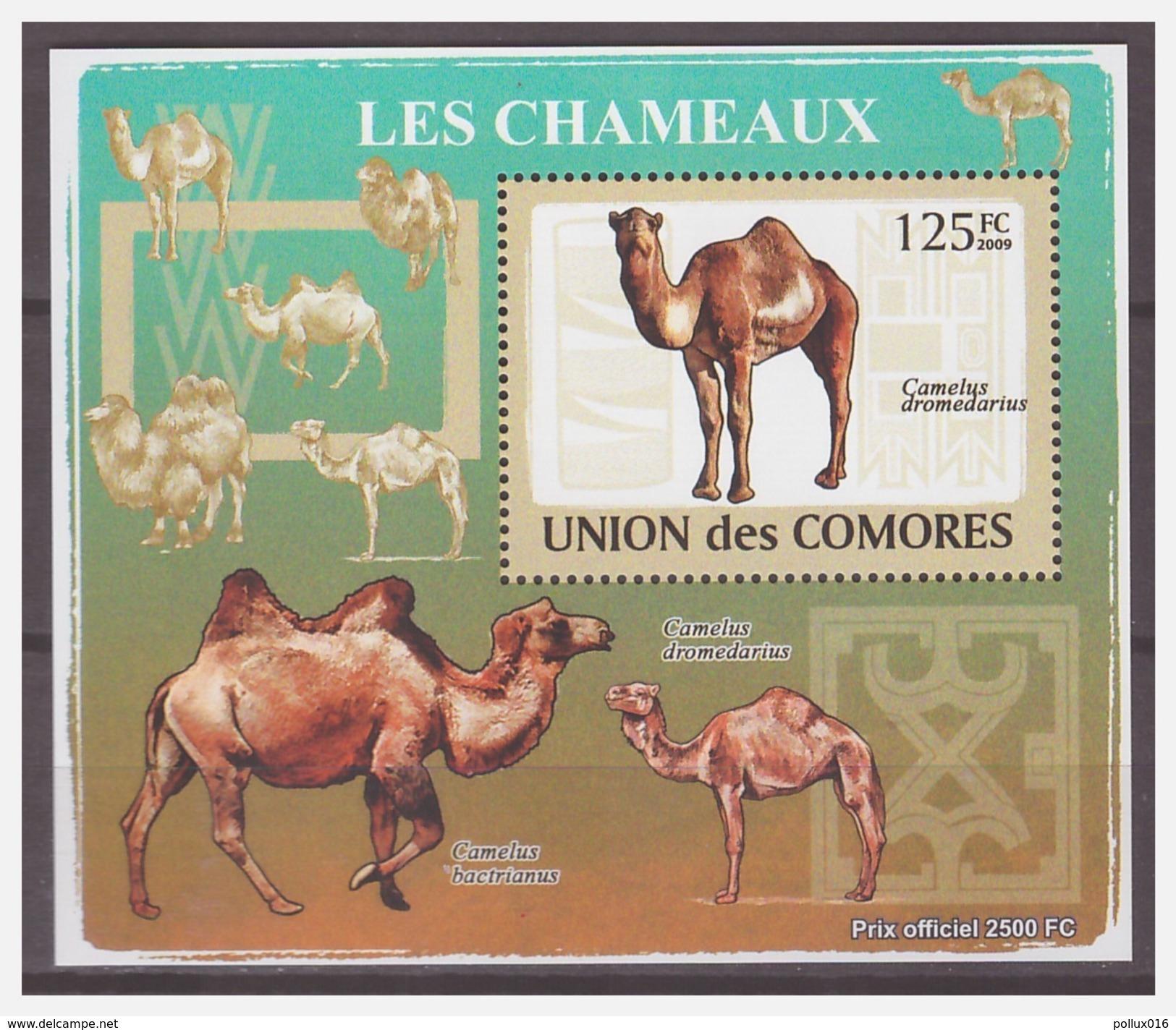 0194 Comores 2009 Kameel Camel S/S MNH - Autres
