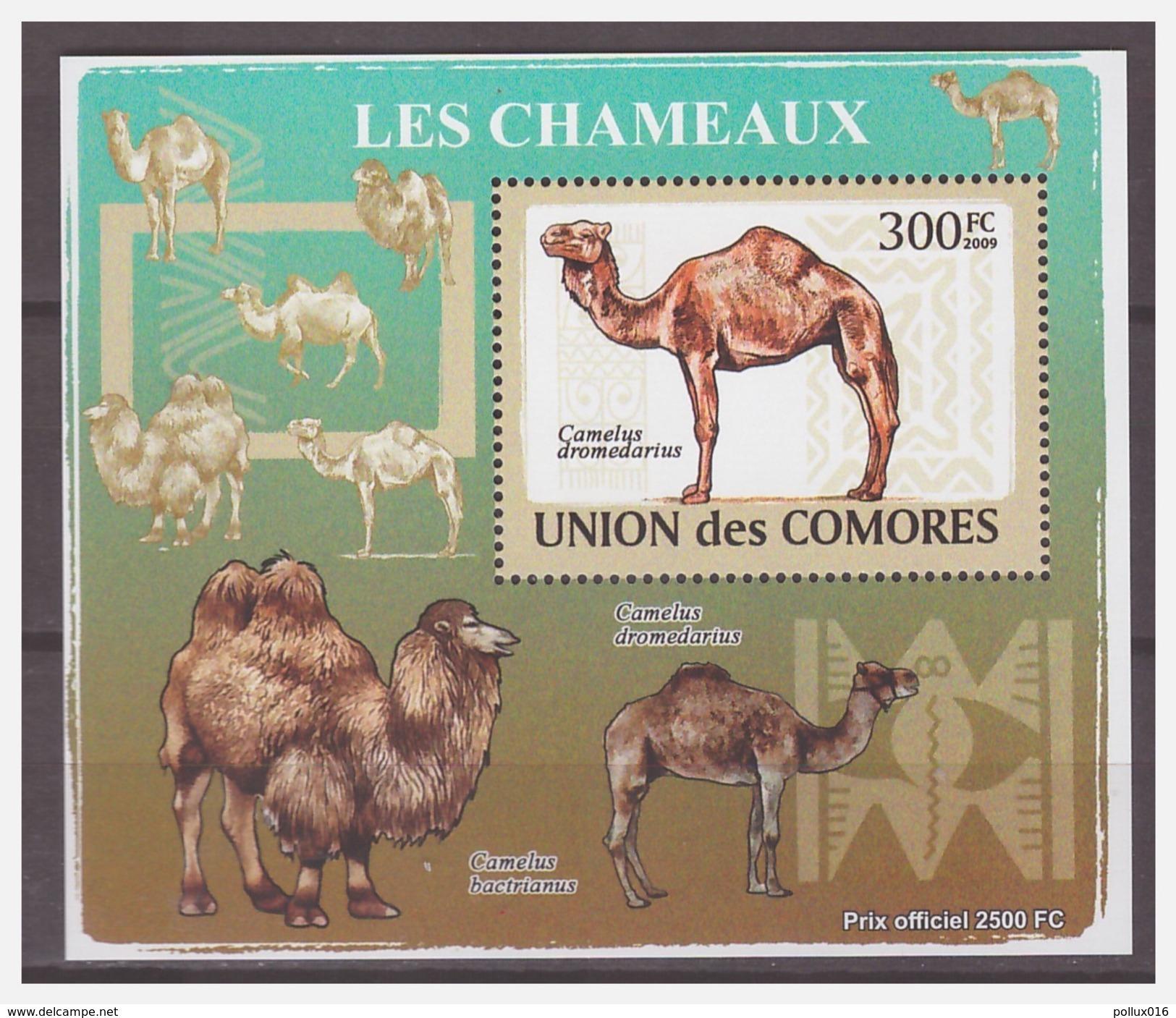 0192 Comores 2009 Kameel Camel S/S MNH - Autres