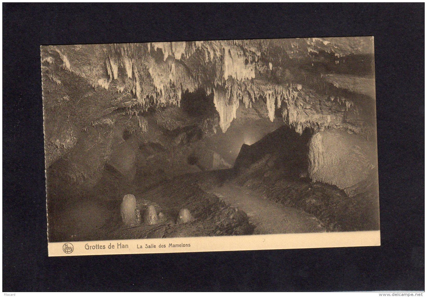 72248    Belgio,   Grottes De Han,   La  Salle Des Mamelons,  NV - Rochefort