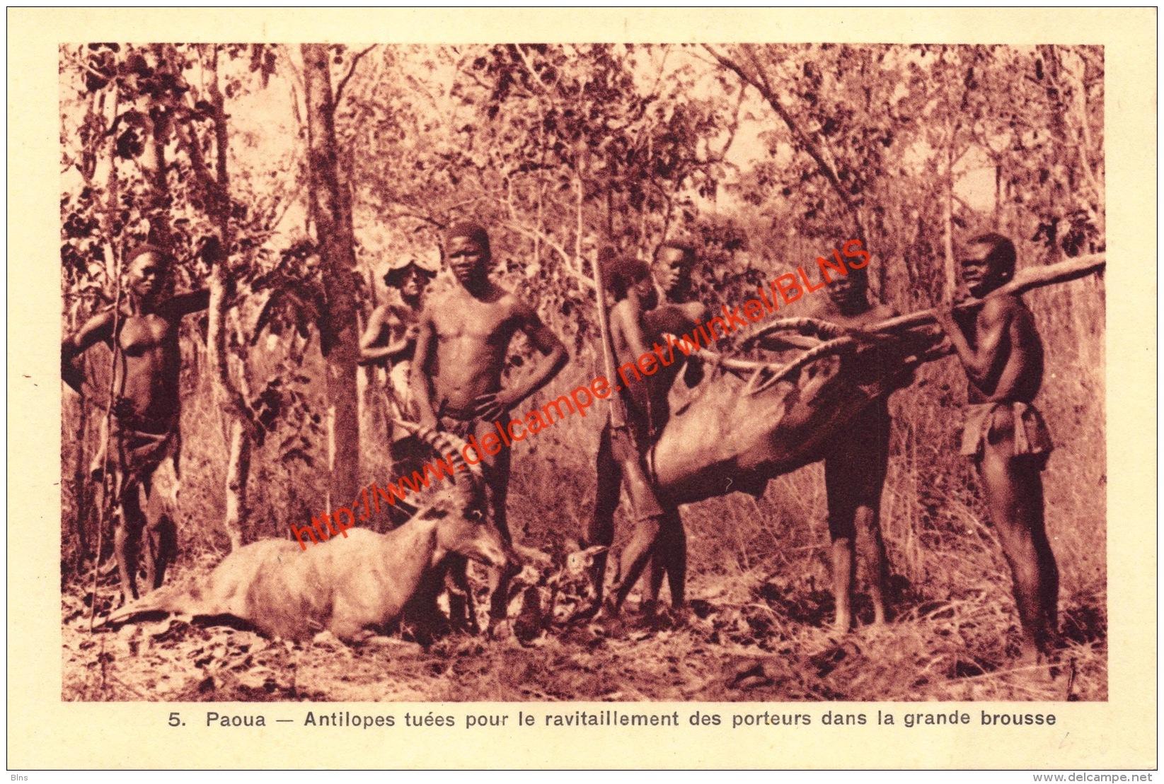 Paoua - Antilopes Tuées Pour Le Ravitaillement Des Porteurs Dans La Grande Brousse - Zentralafrik. Republik