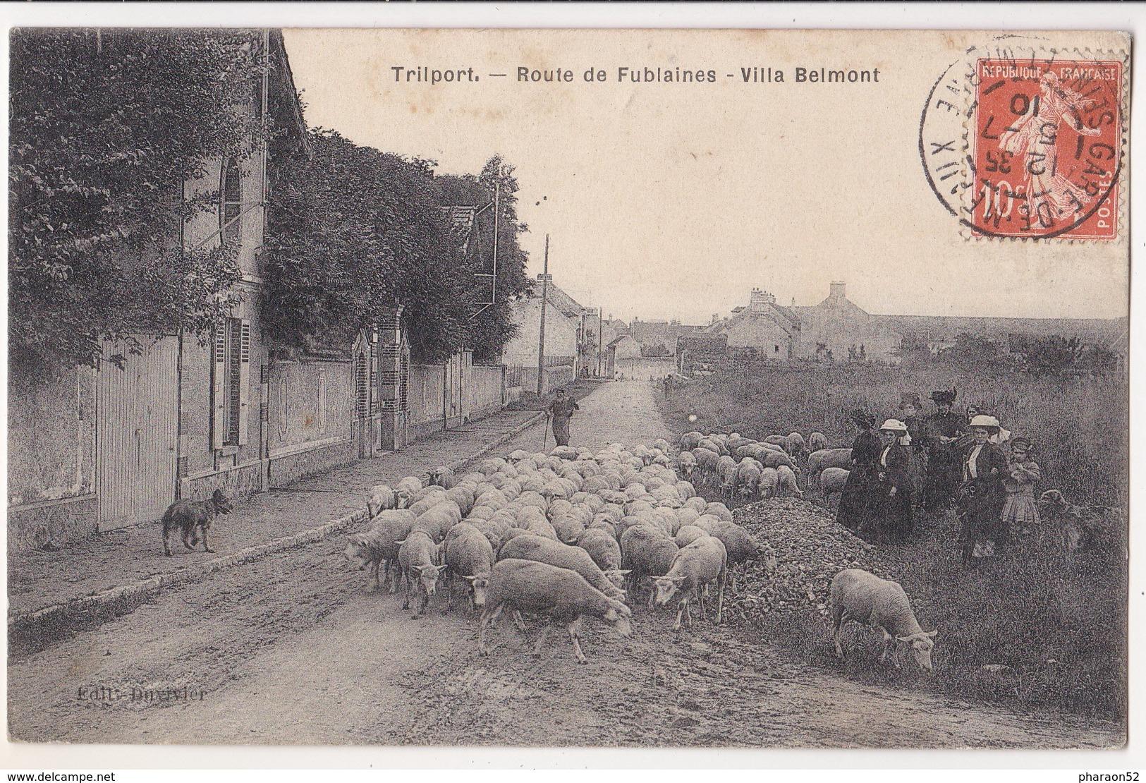 Trilport-route De Fublaines-villa Belmont - France