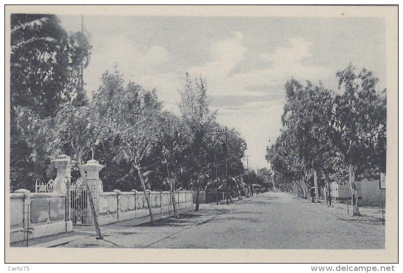 Afrique - Mozambique - Beira - Ex Portugal - Avenida Da Republica - Residencia Do Governador - Mozambique