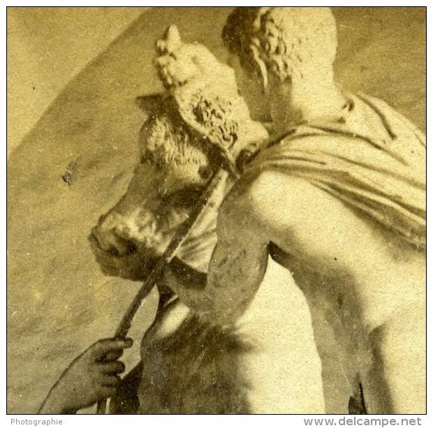 Italie Naples Musée Taureau Farnese Ancienne Stereo Photo 1865 - Stereoscopic