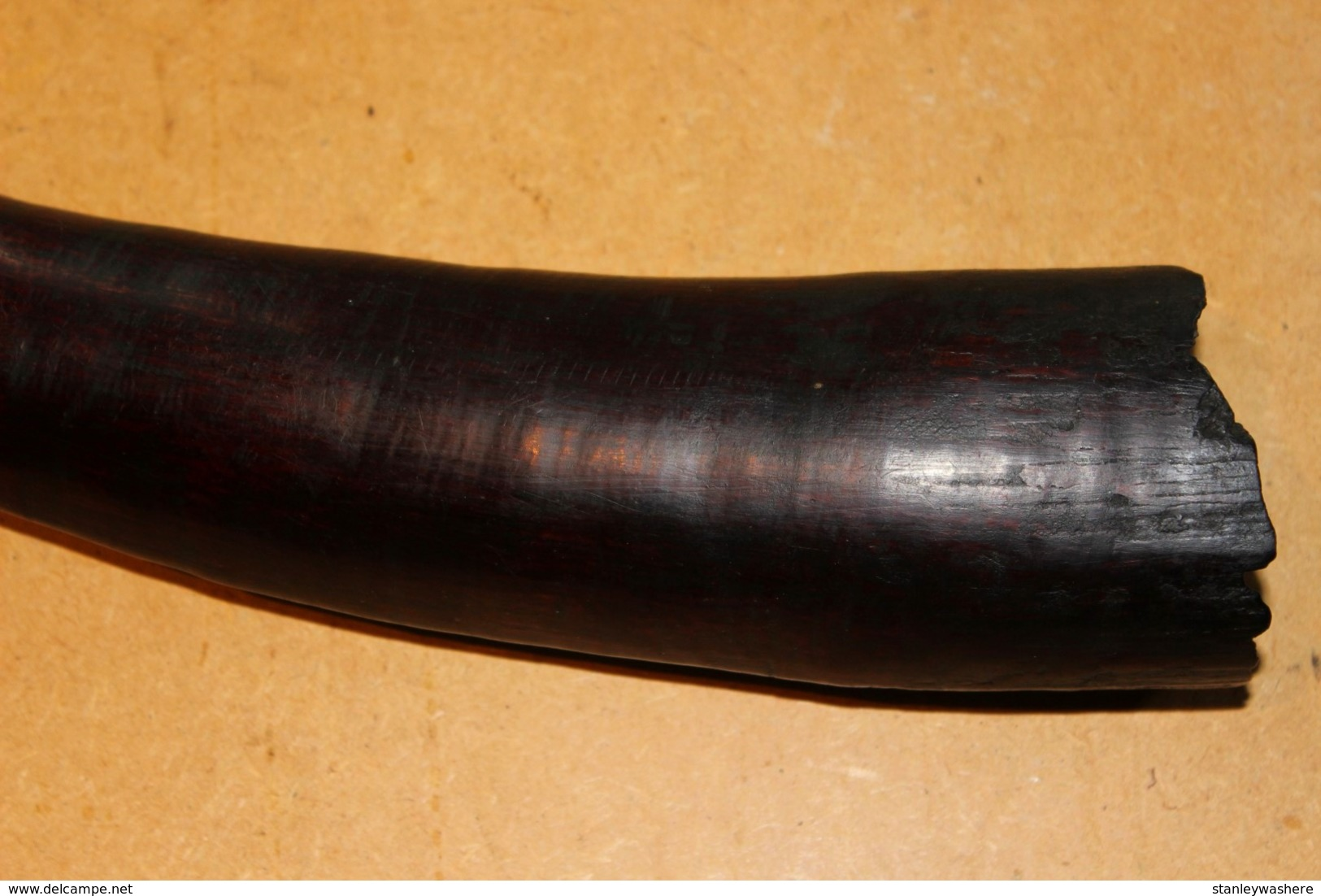 Ancien Trompe En Ivoire SAKA Du Congo Kongo Afrique 1920-30   Africa Afrique Knife African Afrikaans - Art Africain