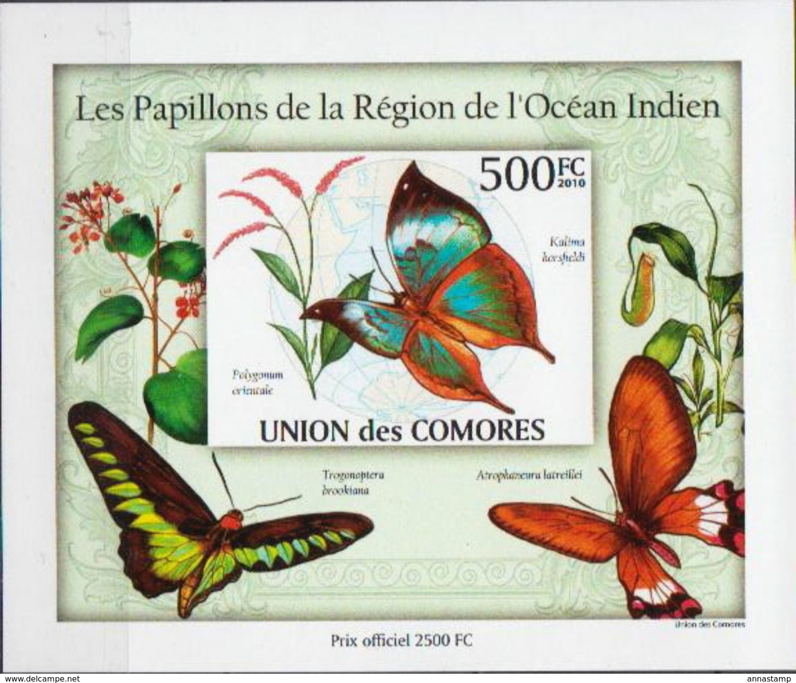 Comores MNH Butterflies Imperforated Set Of 4 Deluxe SSs - Schmetterlinge