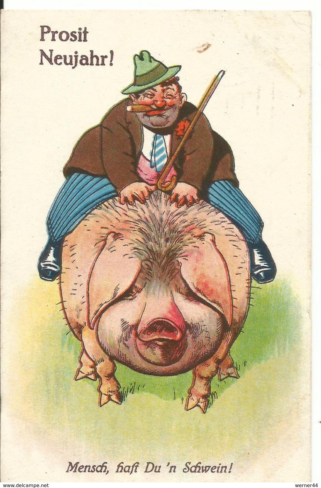 Prosit Neujahr V. 1929  Bauer Reitet Auf Ein Schwein  (50800) - Anno Nuovo
