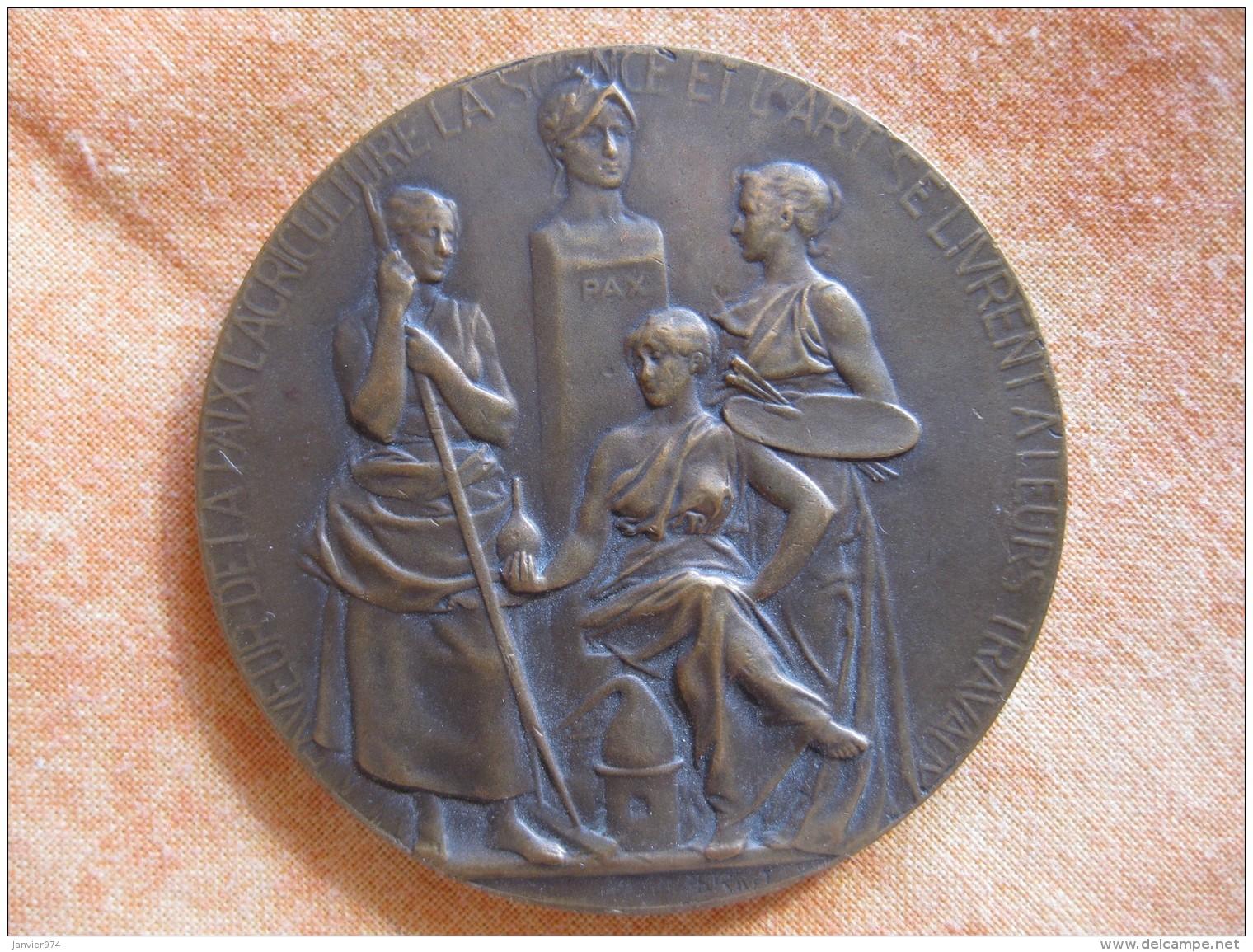 Médaille , Chambre Syndicale Du Commerce Des Vins Et Spiritueux De La Región Du Nord, Attribué  G.RENARD - France