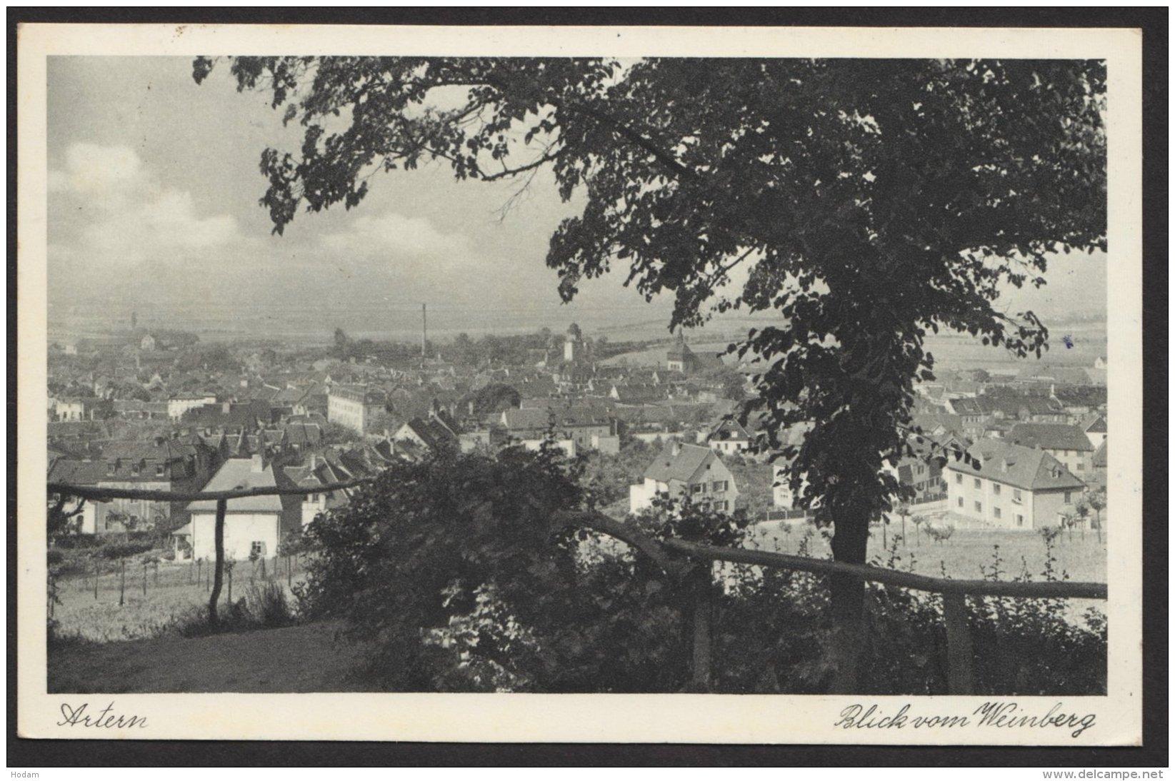 """""""Artern"""" ,Blick Vom Weinberg,l 1951 Gelaufen - Deutschland"""