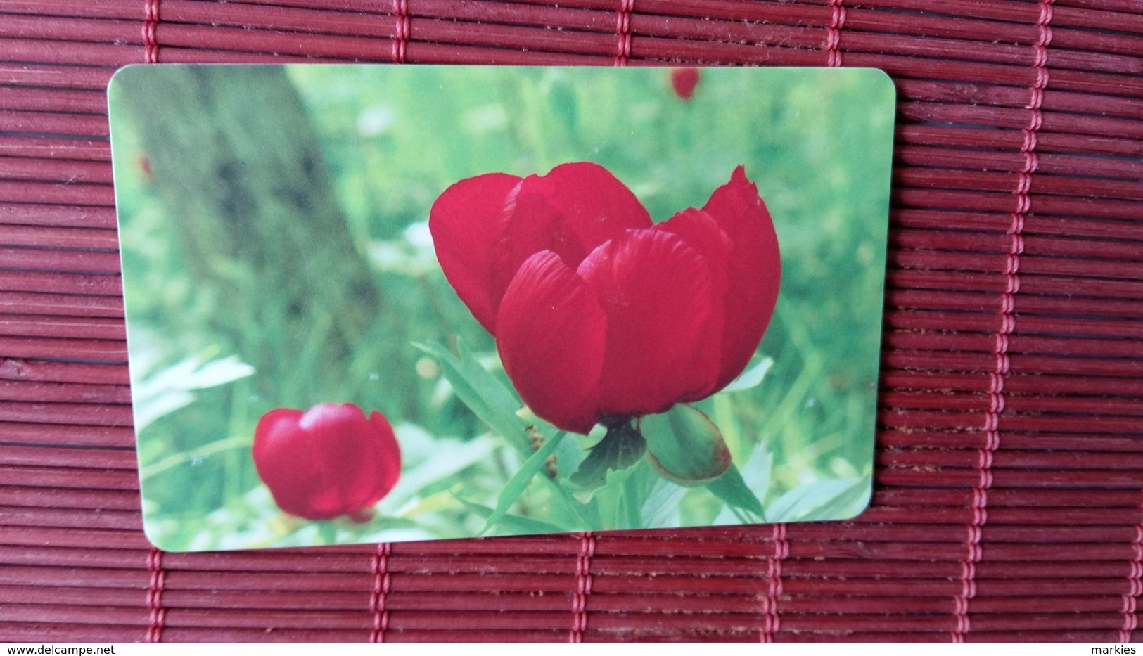 Nice Chip Phonecard Bulgaria Flowers Used - Bulgarije