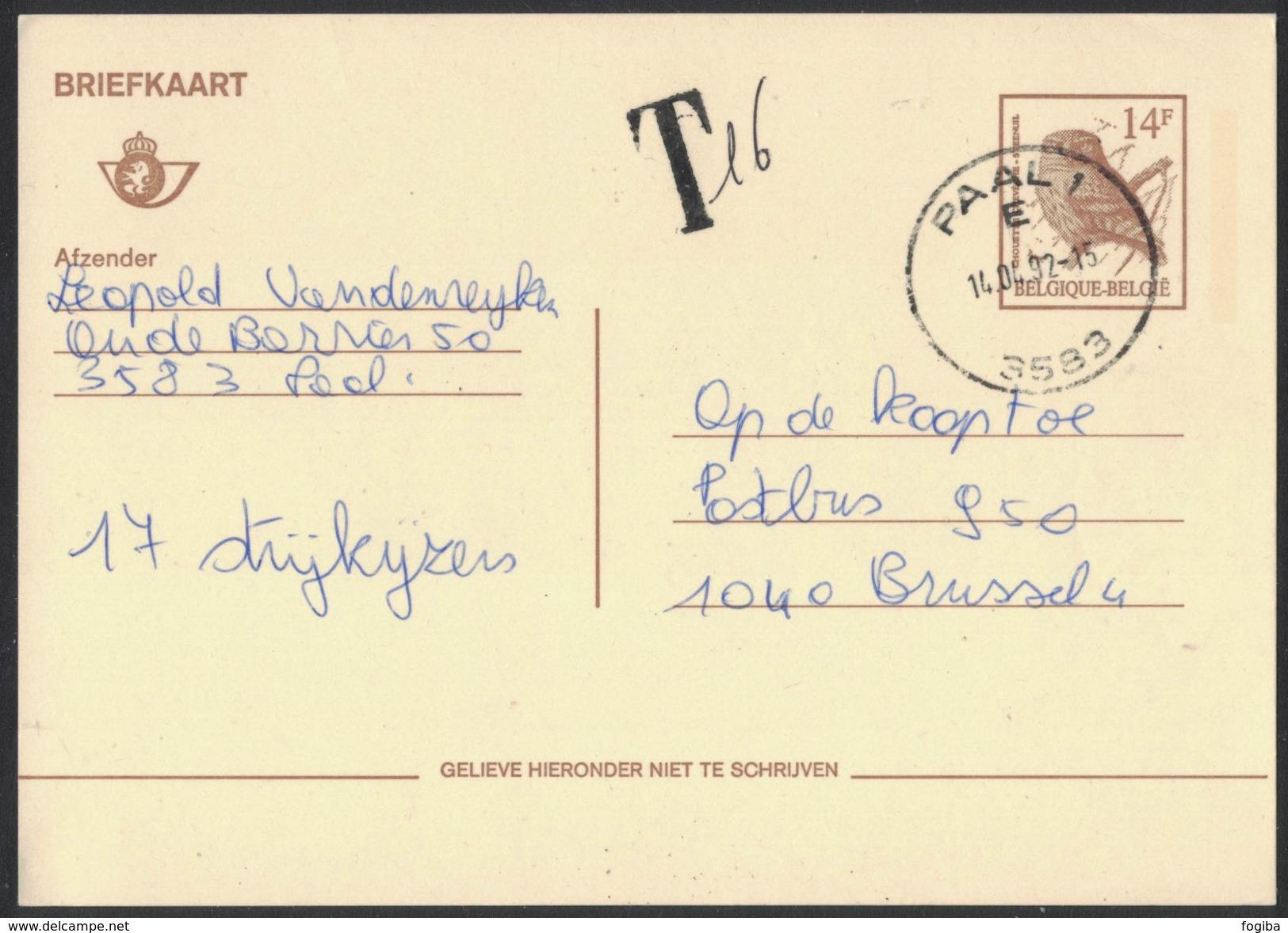 XB43    Carte Postale Briefkaart Buzin / Steenuil Chouette Owl / 1992 Paal - Interi Postali